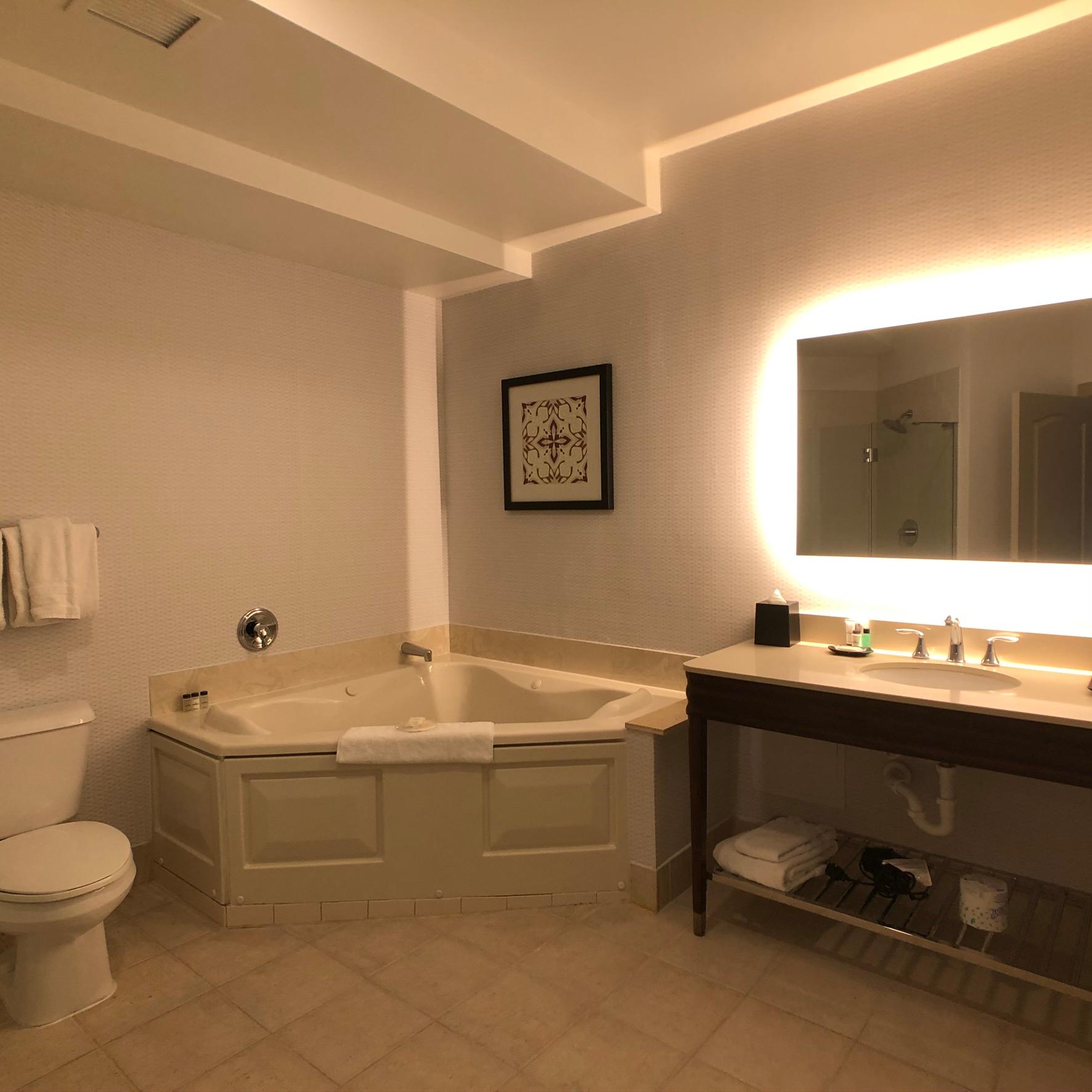 Sheraton Wilmington South Hotel guestroom bath